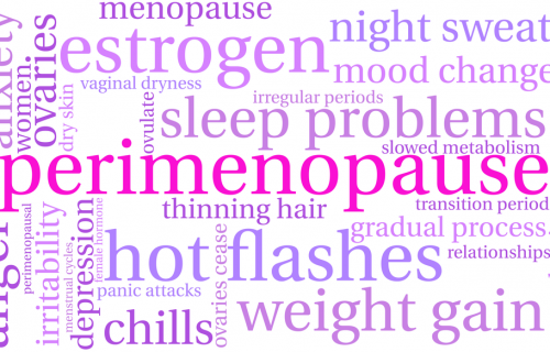 What Is the Difference Between Menopause and Perimenopause?